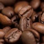 óleo de café