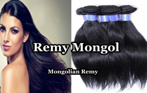 remy mongol